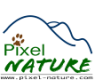 Pixel-Nature